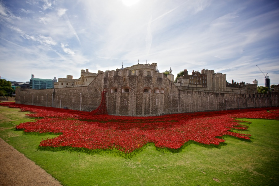 Hundreds of thousands of ceramic poppies cascade from and surround the Tower Of London